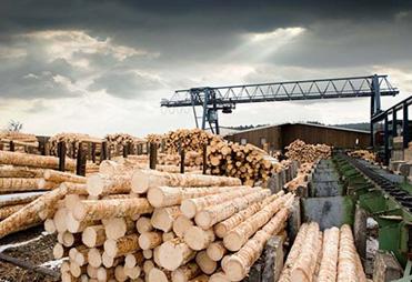 Industria prelucrarii lemnului si a hartiei